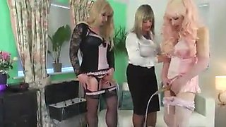 Three transvestites fuck each other in the asshole