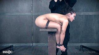 Curvy Latina bombshell Gabriella Paltrova abused in extreme bondage