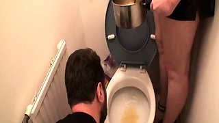 slaves get humiliated on toilet