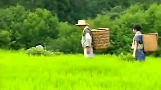 Rural wives'romance in Asian Japan